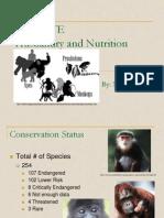 Primate Presentation