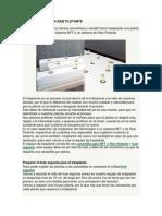 TRASPLANTAR PARA RAIZ FLOTANTE.docx
