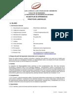 SPA Practicas Laborales ING-SISTEMAS 2014-1pdf