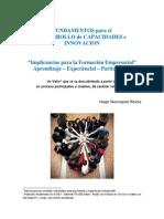 Desarrollo de Capacidades e Innovación - HMR