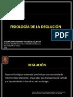6. Fisiologia de La Deglución