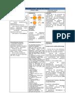 Planificación Anual Ingles 5 Basico