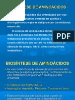 3-Anabolismo de aminoácidos