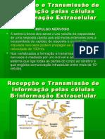 5º-Transmissão de informação extracelular