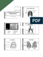 Anatomia Respiratoria II
