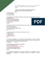 1erP.ANATOMOPATO.UPE