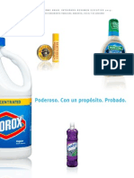 Clorox 2013 Executive Summary Spanish