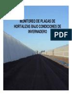 PLAGAS_INVERNADERO1.pdf