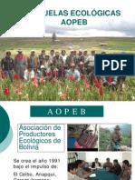 4._AOPEB__Campesino_a_Campesino.pdf