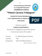 novoandina