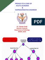 01 Approach to a Case Leukemia and Lymphoproliferative Disor