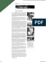 BRANDOLI Dos decadas sin apartheid.pdf