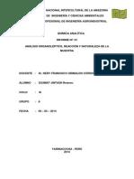 analisis organoleptico N°01