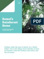 Romels Rainforest Home