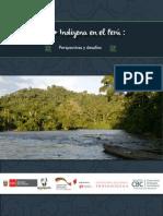 Giz - Redd Indígena Perú