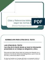MANUAL DE LA APA (2)