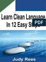 Clean Language 12steps