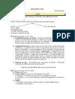 APOSTILA Processo Civil Renato Montans