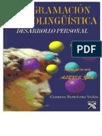 Gustavo Bertoloto Pnl Para El Desarrollo Personal Cropped