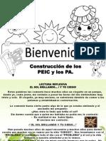 Ponencia de Evaluación de Los Proyectos de Aprendizajes (Pa) y Peic.