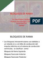 Bloqueos de Rama