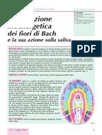 F. Serafini - L'Emanazione Bioenergetica Dei Fiori Di Bach (Fitoterapia, Omeopatia)