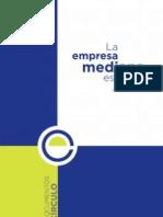 Informe 2014 de La Empresa Mediana Espanola