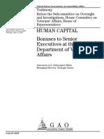 Report on VA Bonuses in 2007