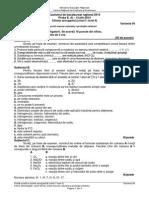 E d Chimie Anorganica Niv I II Tehnologic 2014 Var 04 LRO