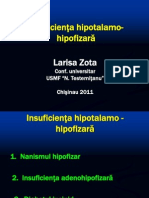 Презентация hipotalam
