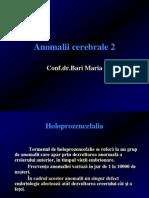 Anomalii cerebrale 2