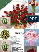 Plan de Afaceri Florarie