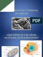 Microorganismos y Sistemas de Defensa