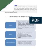 Tema 3 - Profilul Facilitatorului