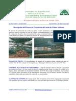 proceso1 aceite de palma.pdf