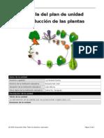 plantilla con lynk- ejemplo