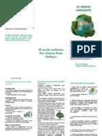 Medio ambiente.doc