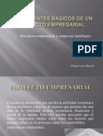 Componentes de proyectos empresariales.ppt