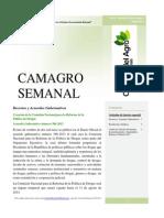 Boletín-No.-6-OBSERVATORIO-LEGISLATIVO-31-Oct-13