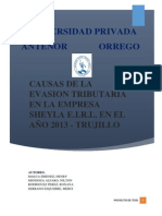 Causas de Evasion Tributaria - Proyecto