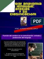 Presenatacion de Neuroanatomia Del Lenguaje