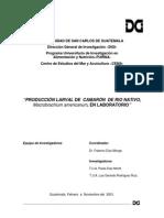 Producción Larval de Camarón de Rio Nativo, Macrobrachium en Laboratorio