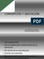 5.- Fertilización, Anidacion y Concepcion