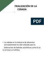 INDUSTRIALIZACIÓN DE LA CEBADA.pptx
