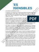 Photofusion.pdf