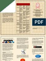 Brochure Promocion Venta