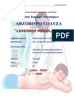 Lesiones Medulare
