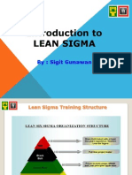 Introduction to Lean Sigma