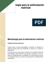 2.4 Metodología Para La Estimulación Matricial