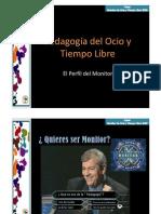 Perfil Del Monitor II